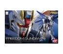 Freedom Gundam RG 1/144